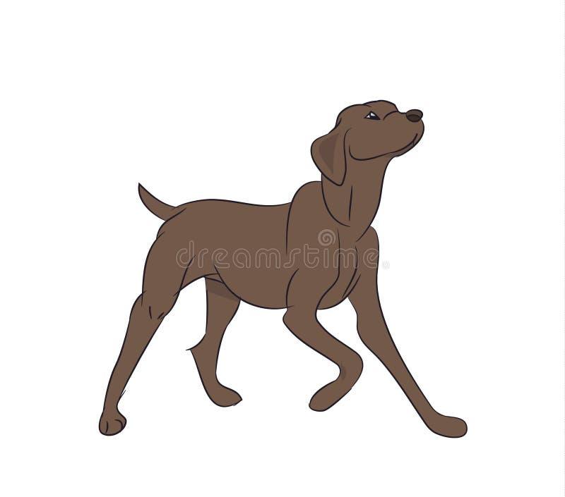 Собака прося еда, вектор бесплатная иллюстрация
