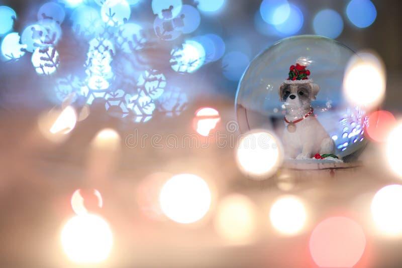 Собака рождества глобуса снега, китайский животный зодиак 2018 да стоковое изображение rf