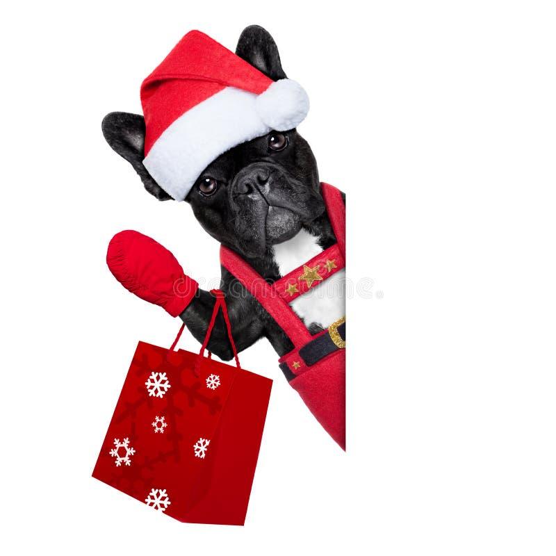Собака Санты стоковые изображения