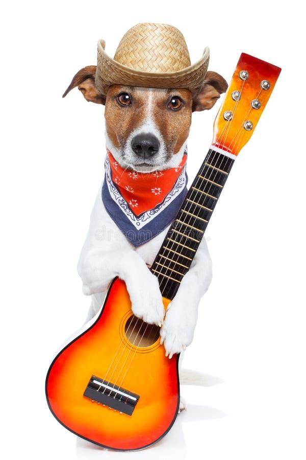 Крутые рисунки собаки на гитару