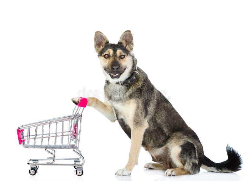 Собака с вагонеткой покупок На белой предпосылке стоковая фотография rf