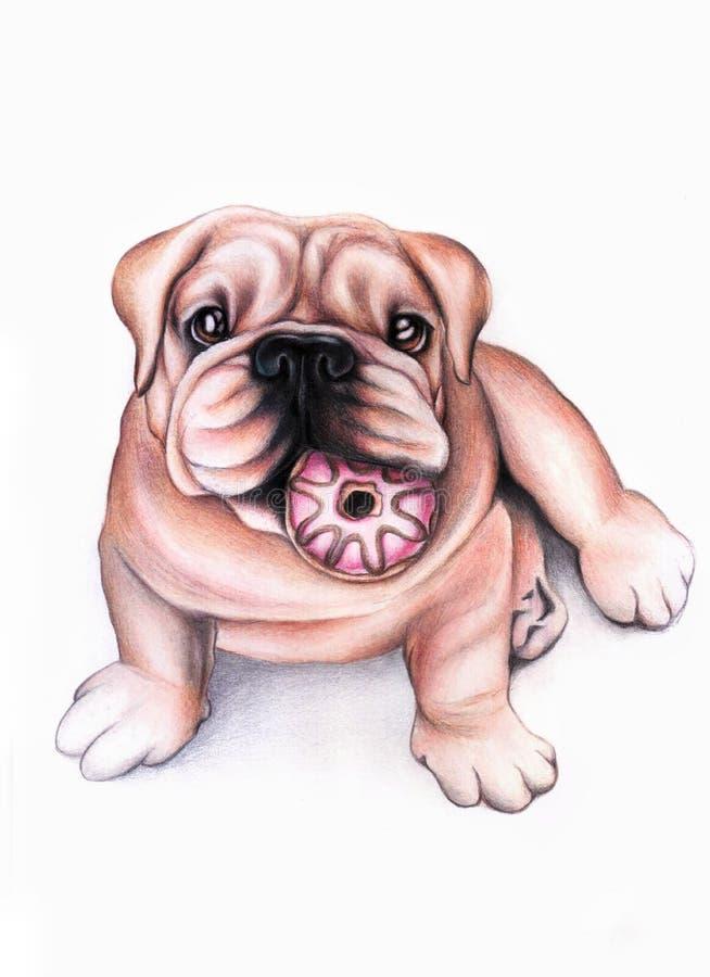 Собака с донутом стоковое изображение