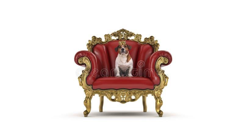 Собака с кроной в стуле стоковое изображение rf