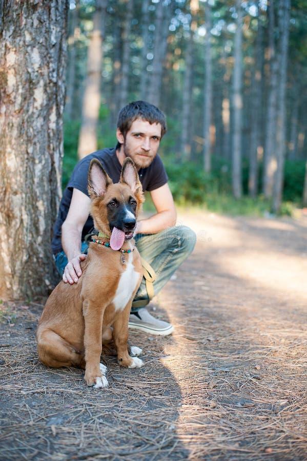 Собака с предпринимателем для прогулки стоковое фото
