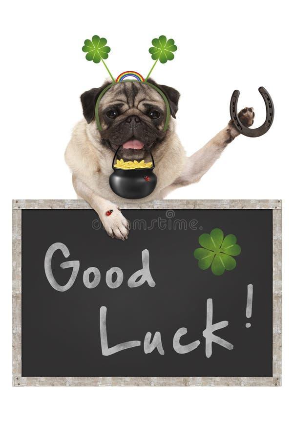 Собака щенка мопса талисмана, с знаком классн классного, клевером shamrock, золотым ботинком монеток, черепашки дамы и лошади для стоковая фотография rf