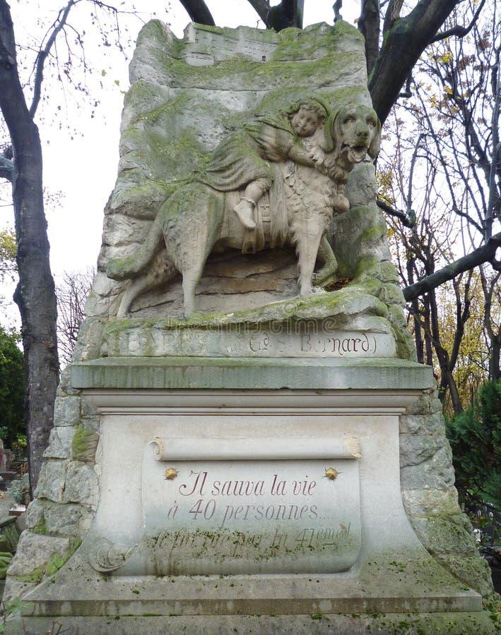 собака paris кладбища стоковые изображения rf