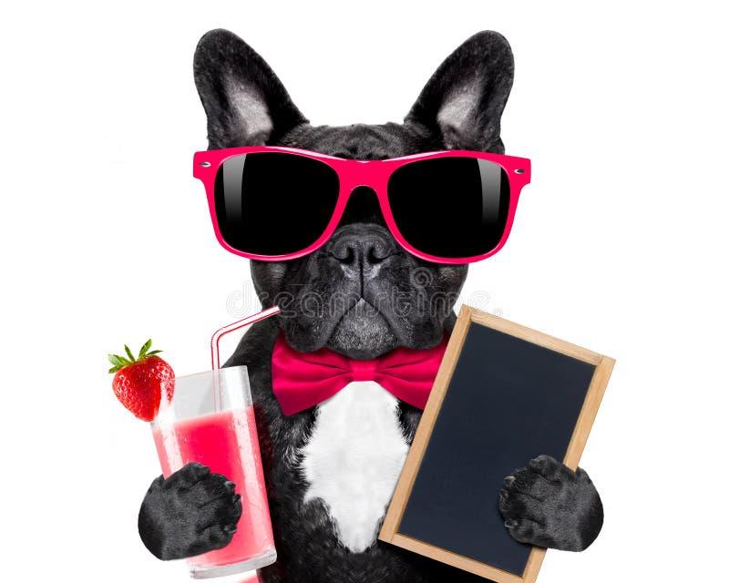 Собака smoothie коктеиля стоковые изображения rf