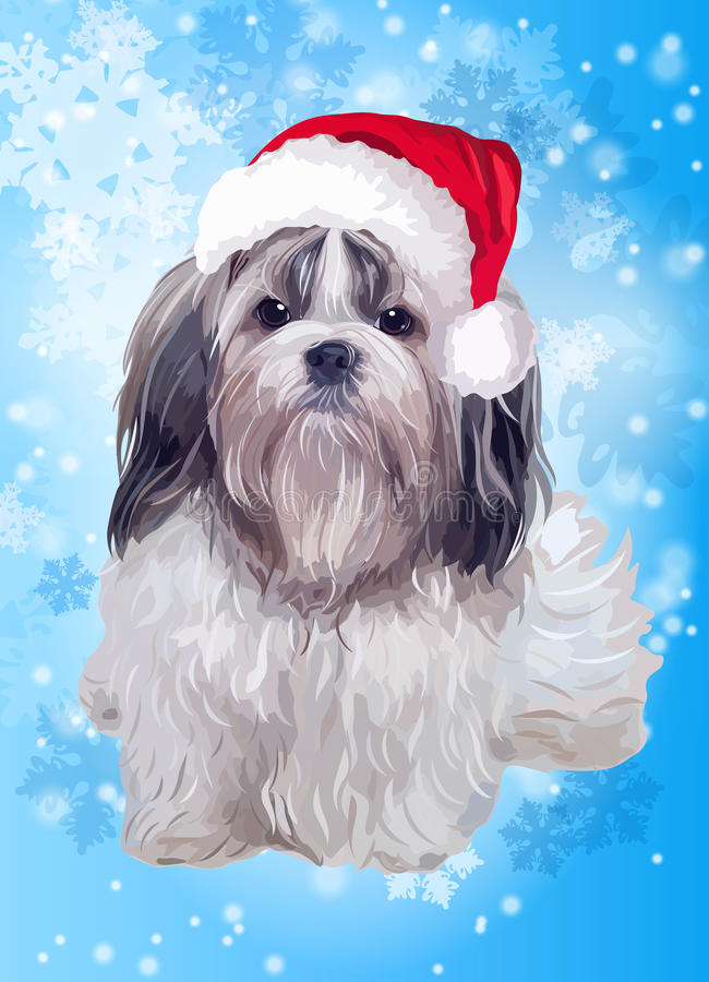 Собака tzu Shih в шляпе santa бесплатная иллюстрация