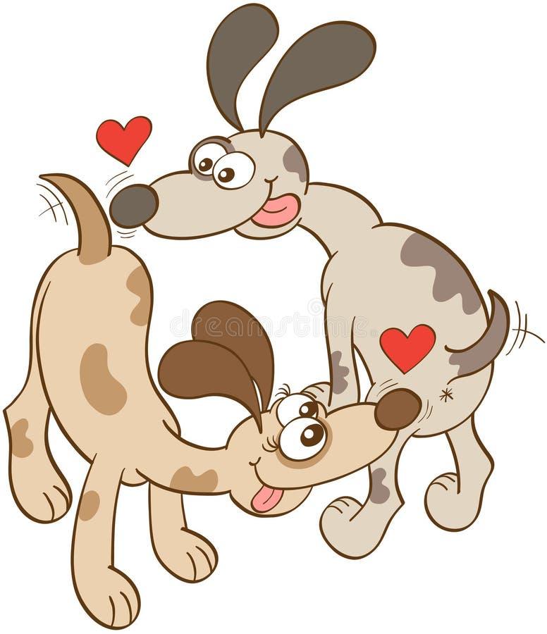 Собаки в баттах обнюхивать влюбленности иллюстрация штока