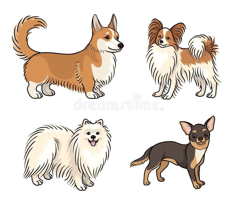 Собаки различных пород в цвете set6 - иллюстрации вектора иллюстрация штока