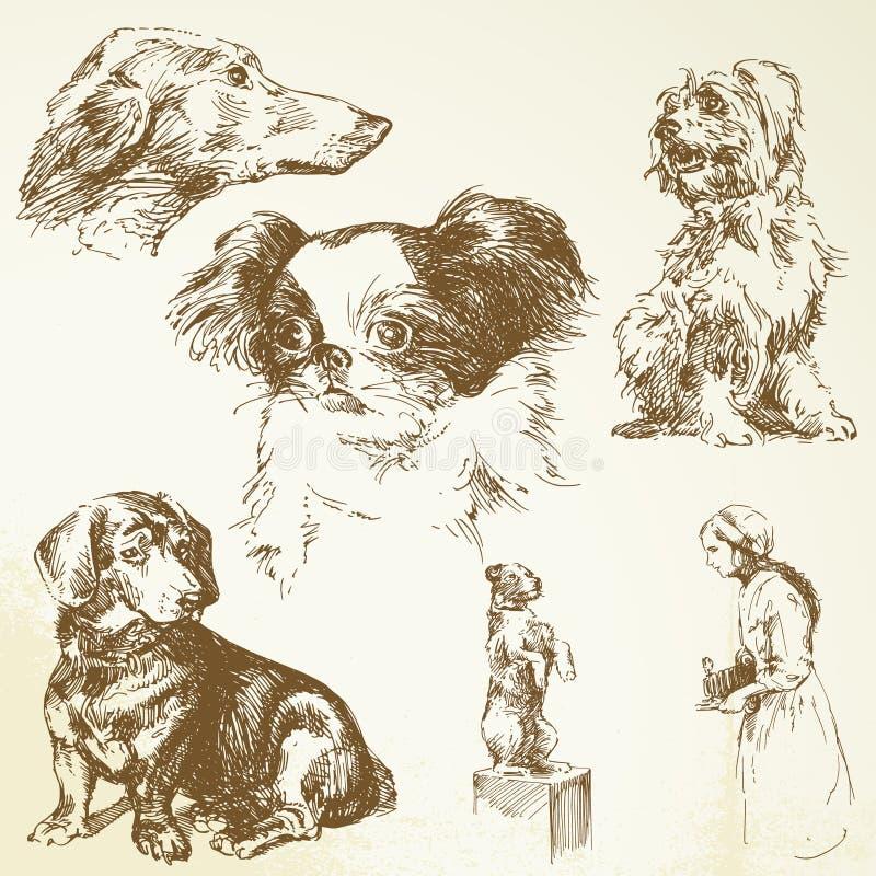 собаки бесплатная иллюстрация
