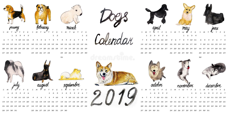 Собаки Calendar 2019 иллюстрация вектора