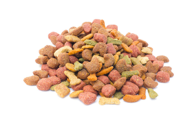Собачья еда стоковое фото rf
