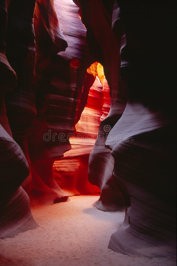 собор каньона антилопы стоковые фотографии rf