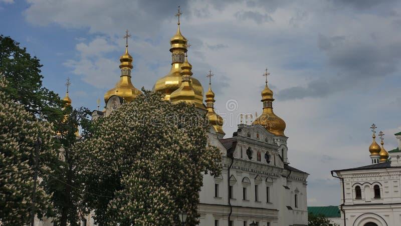Собор предположения Киева Pechersk Lavra окружил путем цвести каштаны стоковые фотографии rf