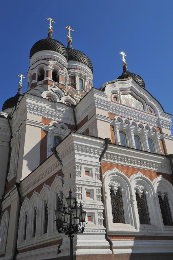 собор эстония nevsky tallinn Александра стоковое фото