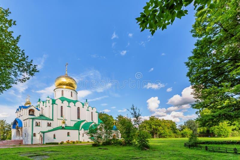Собор Fedorovskiy в Pushkin в летнем дне стоковая фотография rf