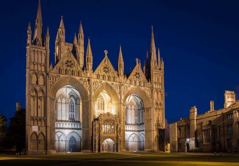 Собор Peterborough на ноче стоковые фотографии rf