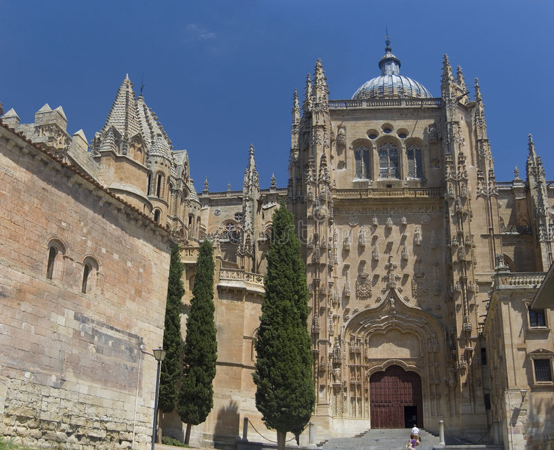 собор salamanca Испания стоковая фотография rf