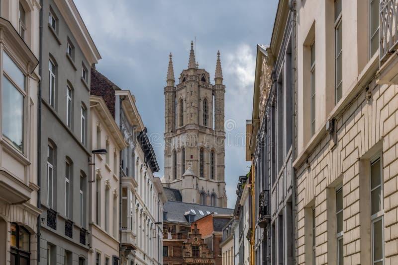 Собор Sant-Baafs, или в голландском Sint Baafskathedraal стоковые фотографии rf