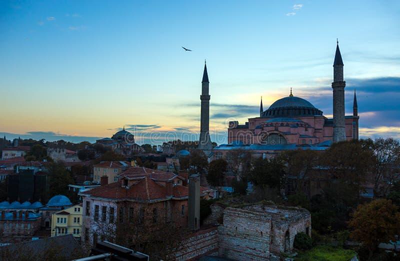 Собор Sophia и старый район Стамбула города на восходе солнца стоковые изображения