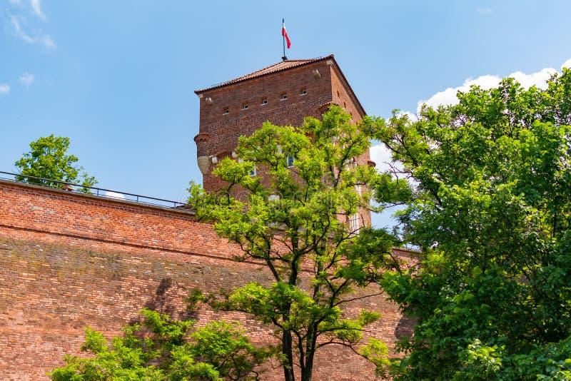 Собор St Stanislaw и St Vaclav и королевского замка на холме Wawel, Краков, Польши на солнечном после полудня стоковое изображение