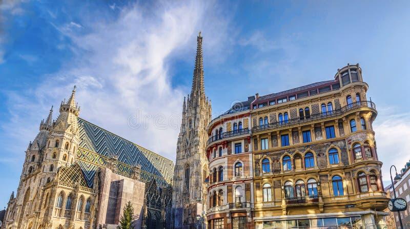 Собор St Stephen на stephansplatz в вене стоковое фото rf