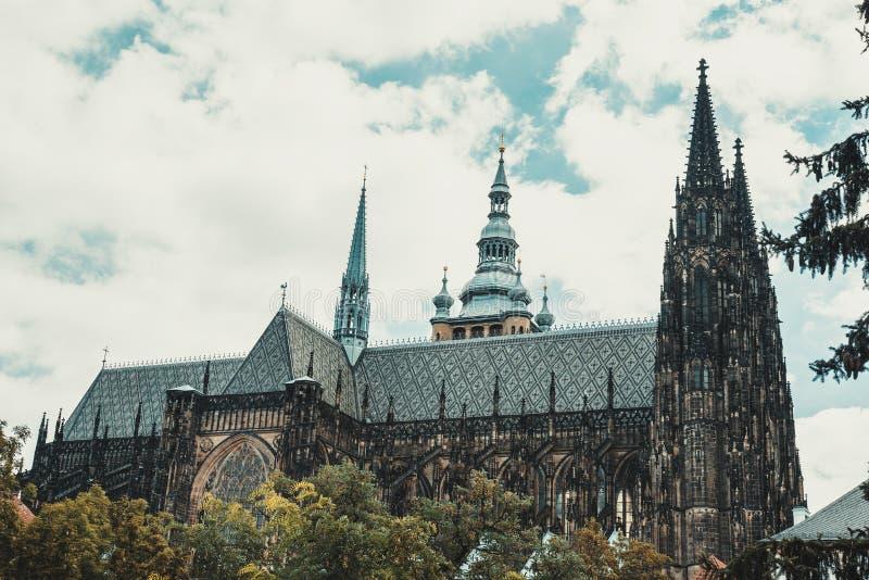 Собор Vitus Святого в чехии Праги стоковая фотография rf