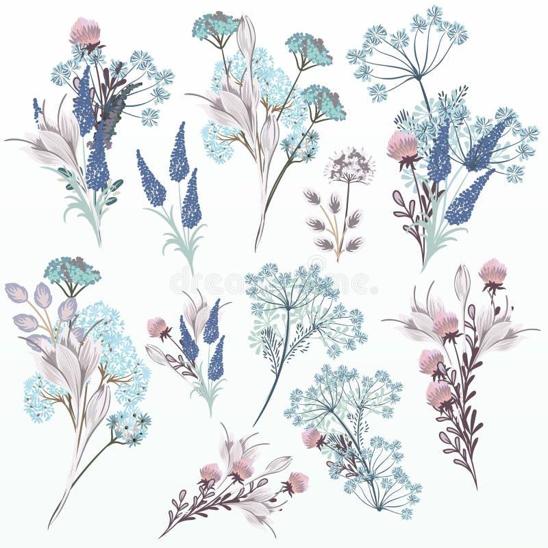 Собрание акварелей вектора флористических в мягких цветах иллюстрация штока
