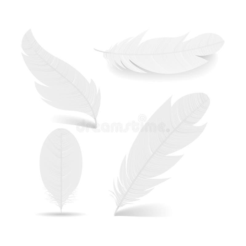 Собрание белых пер Различные формы Анджела или птицы детализировали пер Реалистическим иллюстрация изолированная вектором стоковое изображение
