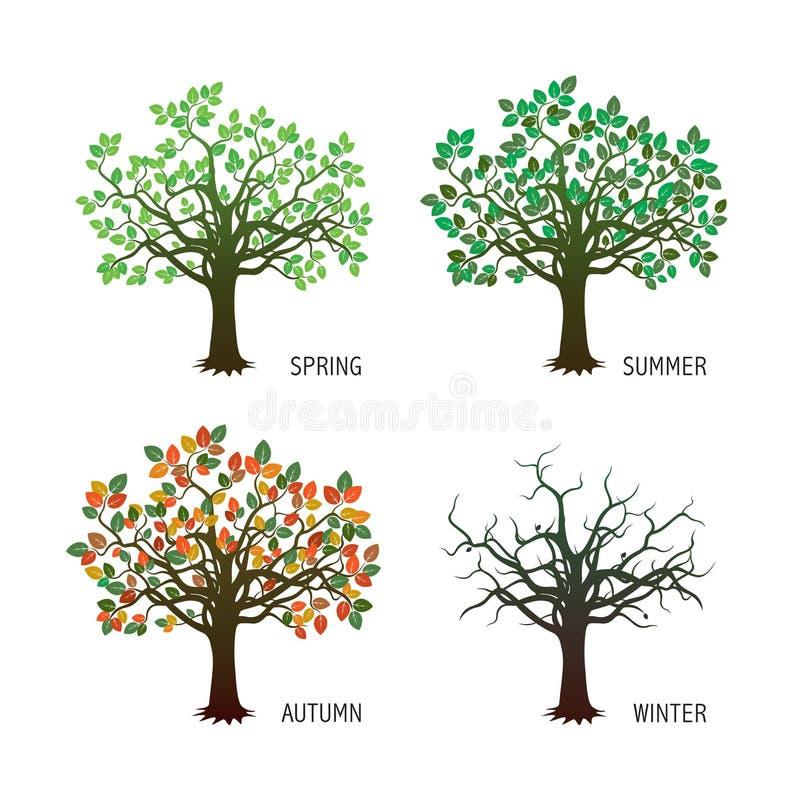 Собрание 4 деревьев сезона также вектор иллюстрации притяжки corel бесплатная иллюстрация
