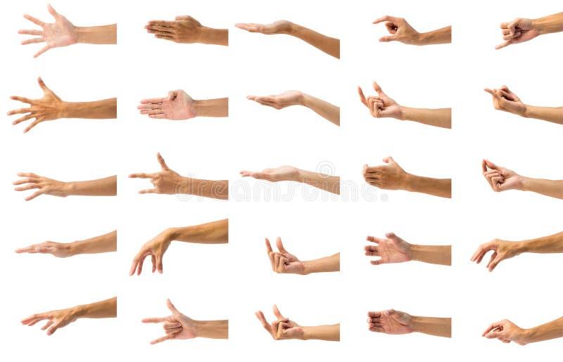 Собрание жеста рукой человека изолированное на белой предпосылке стоковая фотография rf