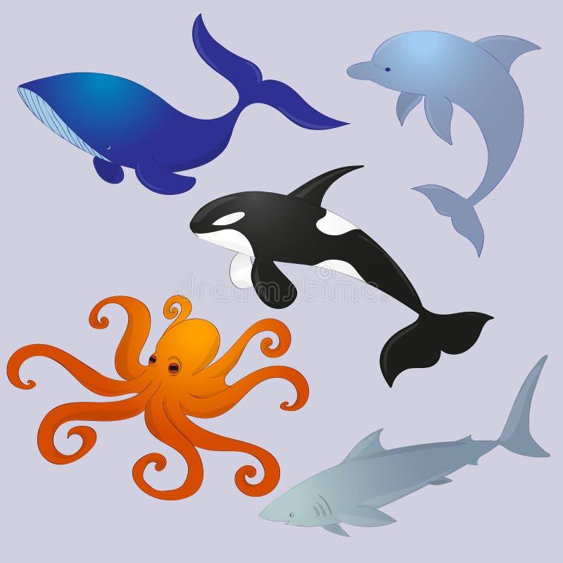 собрание животных океана стоковое фото