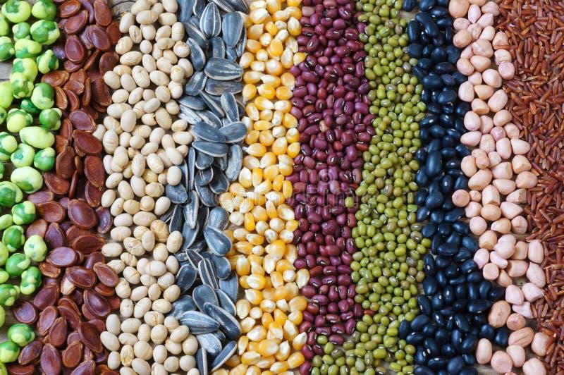 Собрание зерна, хлопьев, семени, фасоли стоковое фото