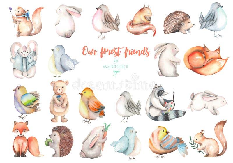 Собрание, комплект иллюстраций животных леса акварели милых иллюстрация вектора