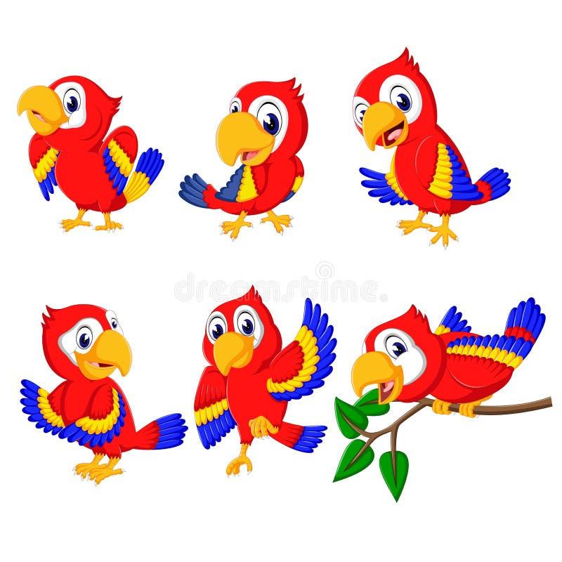 Собрание красивых красных попугаев с различный представлять иллюстрация вектора