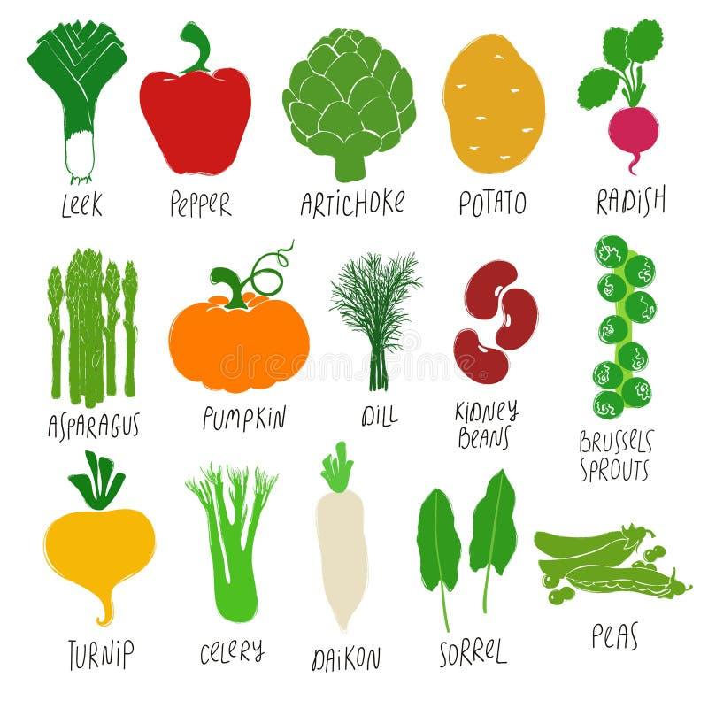 Собрание красочных овощей мультфильма иллюстрация вектора