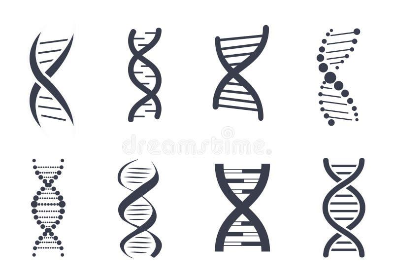 Собрание логотипа цепи дизоксирибонуклеиновой кислоты дна иллюстрация штока