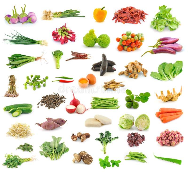 Собрание овоща и травы стоковые изображения