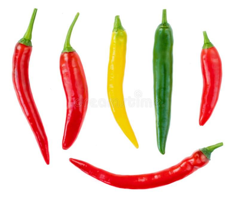 Собрание перцев Chili изолированных на белой предпосылке Взгляд сверху Пищевой ингредиент Красный, желтый, зеленый перец стоковые изображения