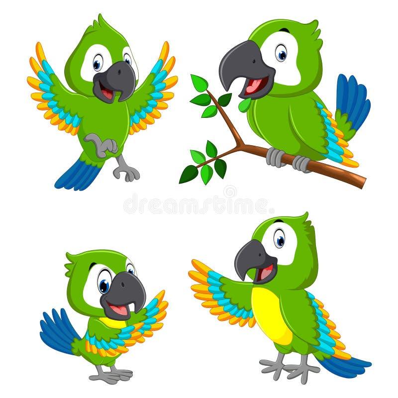 Собрание попугаев зеленого цвета с различным выражением иллюстрация штока