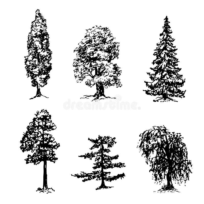 Собрание элементов разных видов деревьев делает эскиз к иллюстрации иллюстрация штока