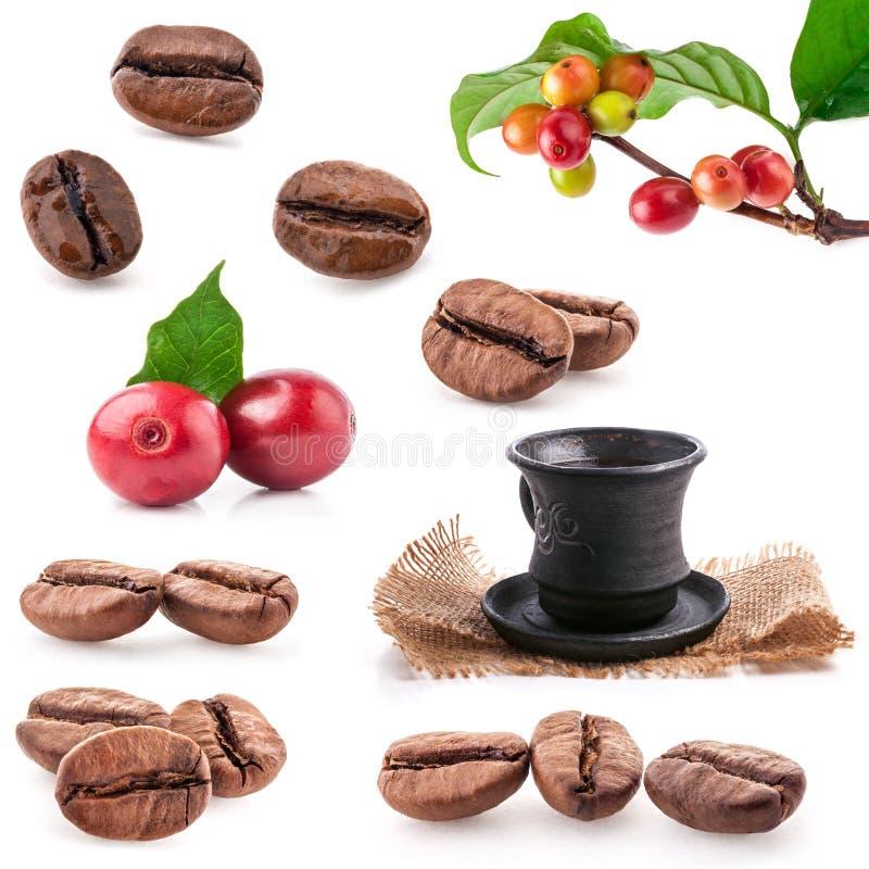 Собрания зажаренных в духовке и красных кофейных зерен стоковое фото