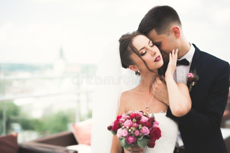 Совершенная невеста пар, groom представляя и целуя в их дне свадьбы стоковое изображение