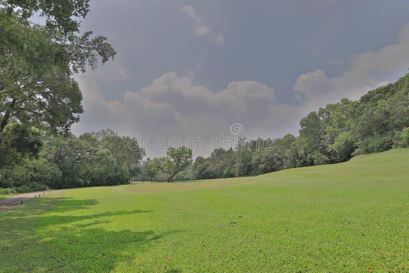 Совершенное поле поля для гольфа травы на hk стоковые фотографии rf