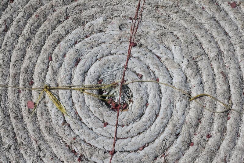 Совершенно круговая спирально свернутая спиралью морская веревочка стоковое изображение
