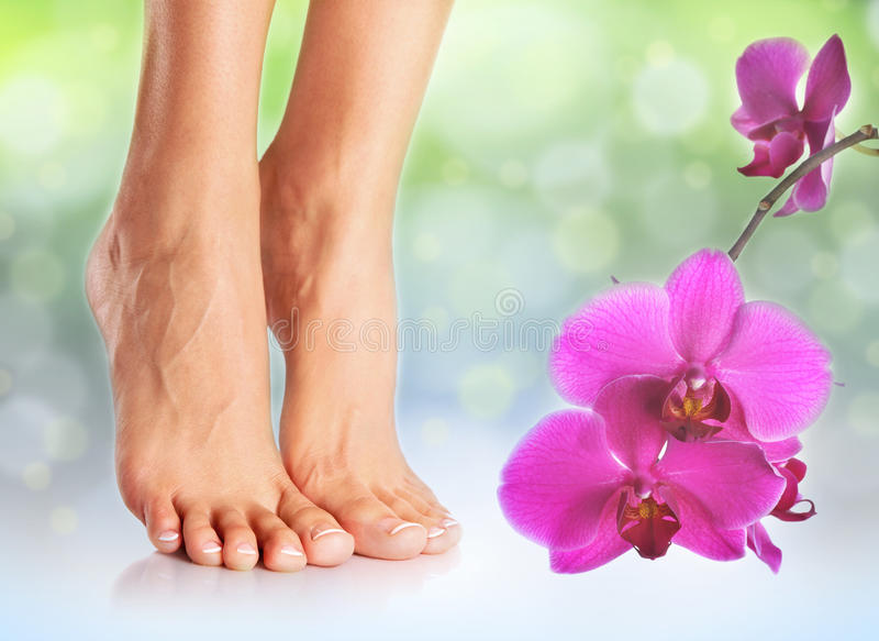 Совершенные женские ноги стоковая фотография