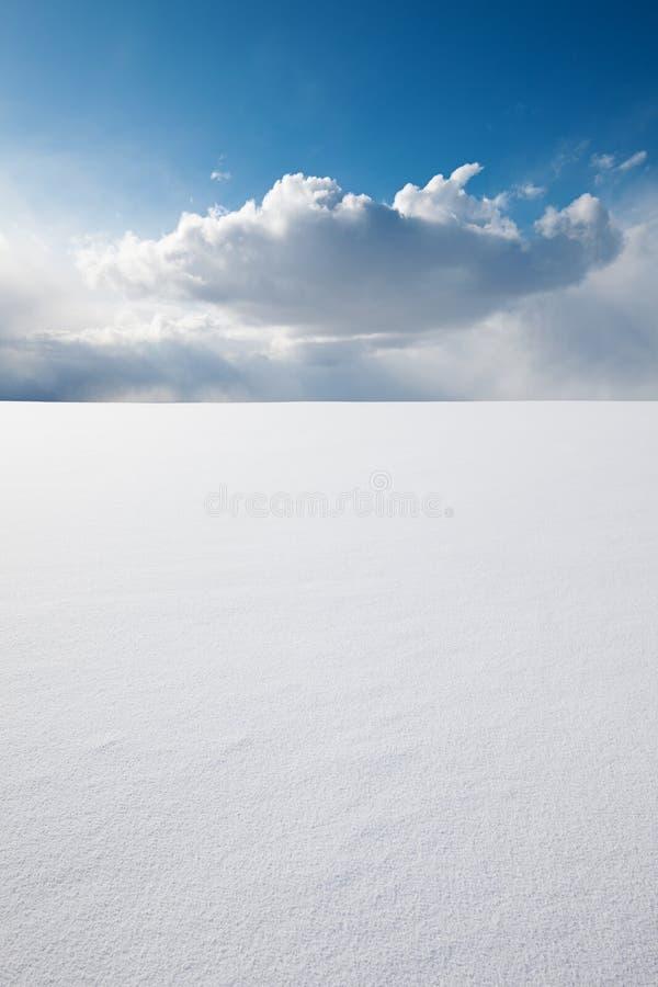 Совершенство зимы стоковые фото