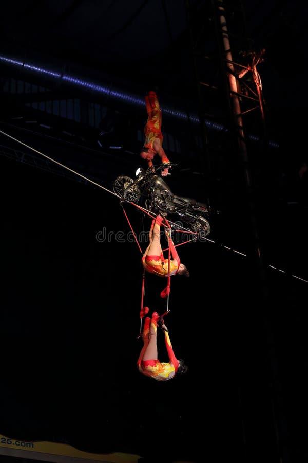 Совершители цирка на натянутой проволоке стоковые фотографии rf