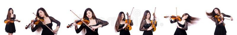 Совершитель женщины играя скрипку на белизне стоковая фотография